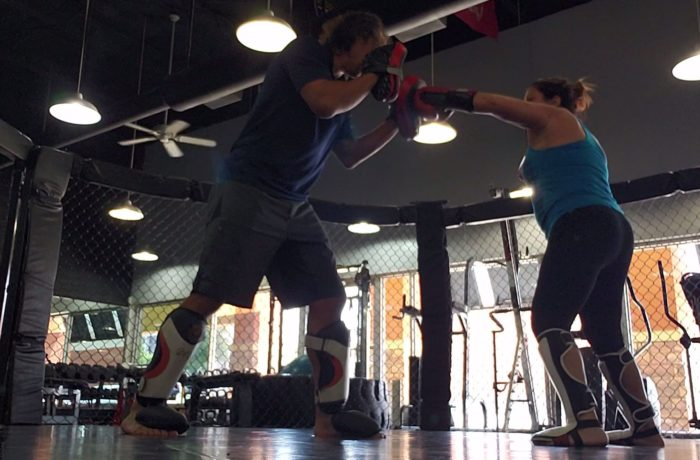 mixed martial arts, boxing, self defense, womens self defense, dallas tx, dallas trainer, martial arts, Steve Hess, Diet, Nutrition